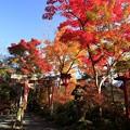 Photos: 鍬山神社73