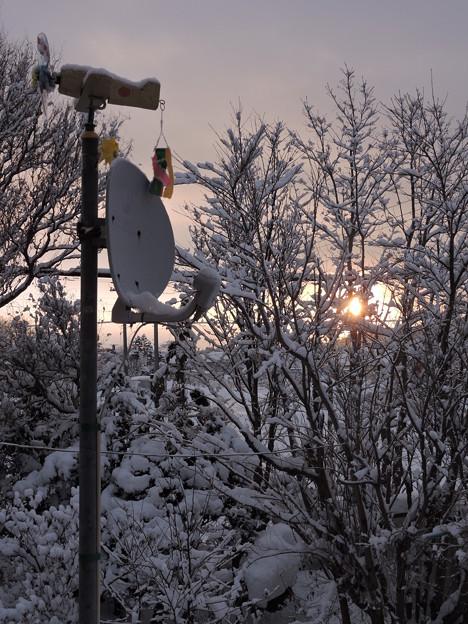 夜明けの雪景