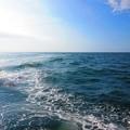 Photos: 波をかき分けて