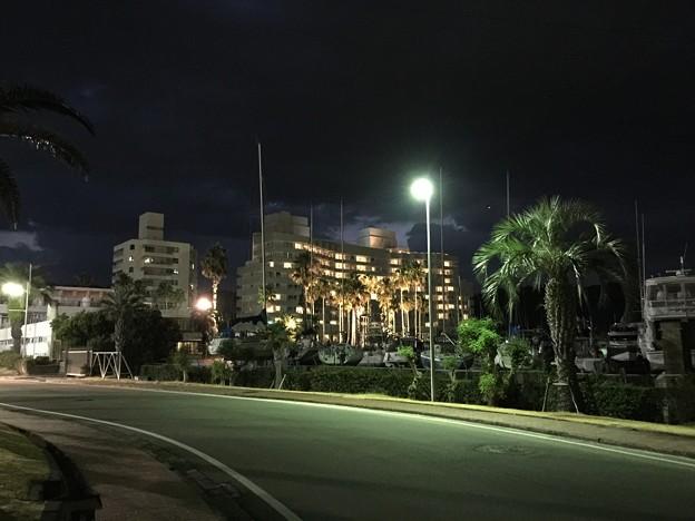 夜のマリーナ周辺