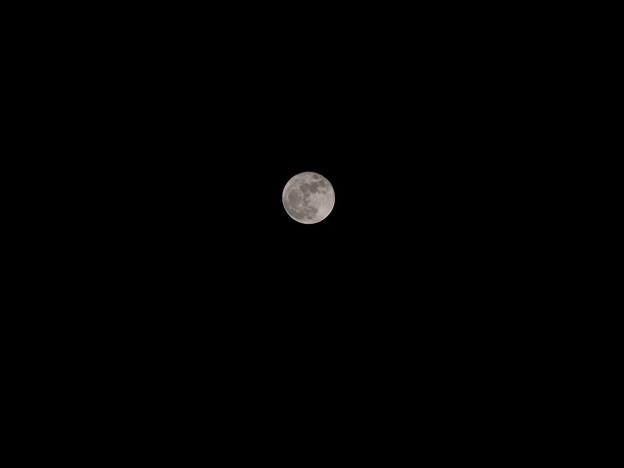 写真: 2016/12/4 満月