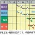 Photos: 森盛(緑色カリフラワー)