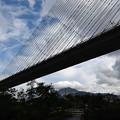 秩父公園橋と武甲山