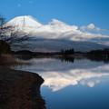 写真: 富士山 (10)