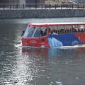 Photos: 水陸両用車 (3)