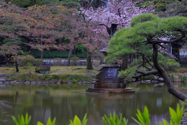 鶴の噴水(5)