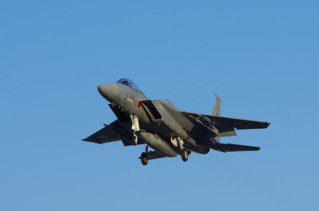 F-15J(1)