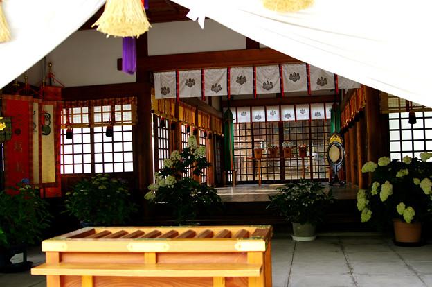 紫陽花・御裳神社(8)