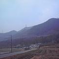 写真: おはようございます。ぼんやりとした曇りの朝になりました>