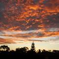 写真: Five Minutes to the Sunrise 8-10-16