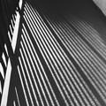写真: Raking Light in the Morning 9-10-16