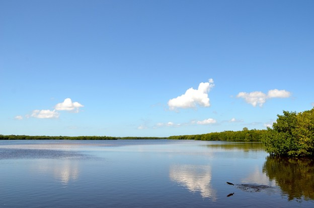 写真: Low Tide 10-18-16