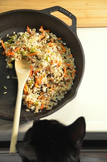 「第116回モノコン」料理が得意な猫