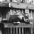 Photos: Kitchen 1-13-17