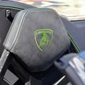 写真: Emblem 2-11-17