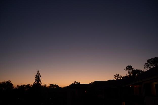 The Dawn 2-25-17