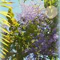 Queen's Wreath Going Wild 3-18-17