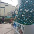 Photos: ながの東急前のクリスマスツリーのところで、ましゅ&Keiのパフォーマンスがあるよ!今日の1時と3時から!各30分間。
