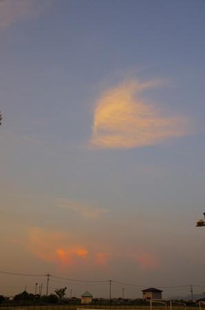 8月の夕空