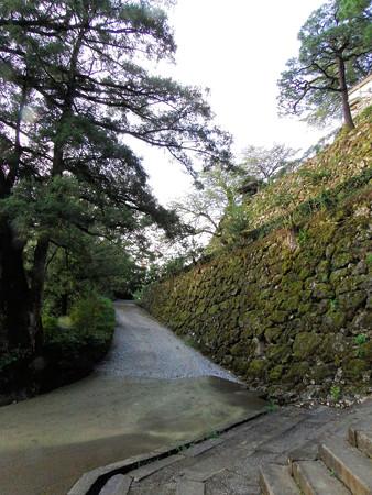 八月終わりの高知城朝景色