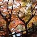 Photos: 瀬戸 岩屋堂4