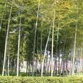 Photos: 名古屋農業センター2