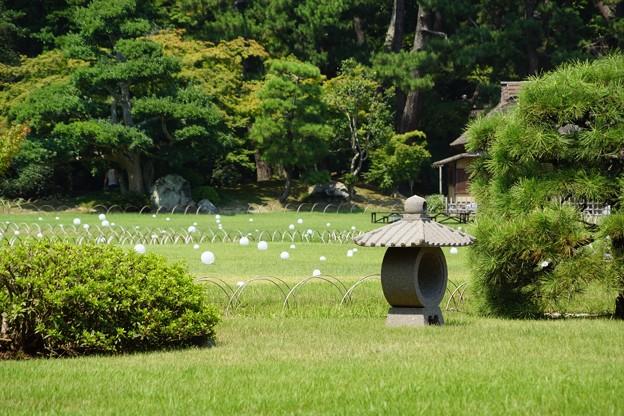 岡山後楽園6