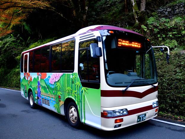 2016_1112_153044 かわいいデザインの京都バス