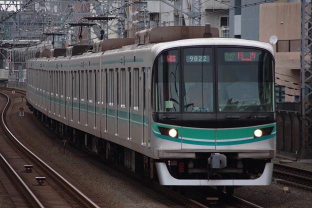 IMGP2429