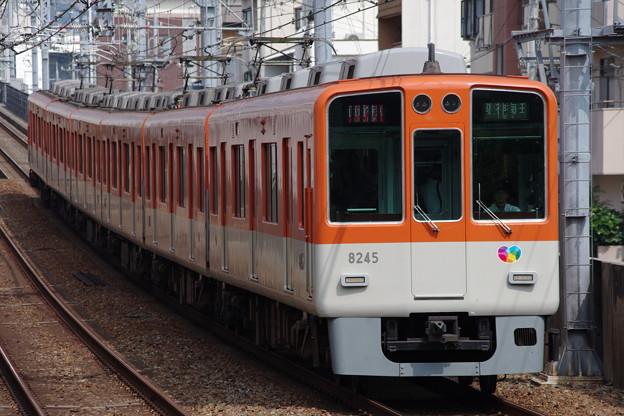 IMGP2875