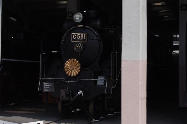 IMGP3543