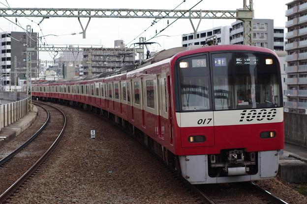 IMGP5551