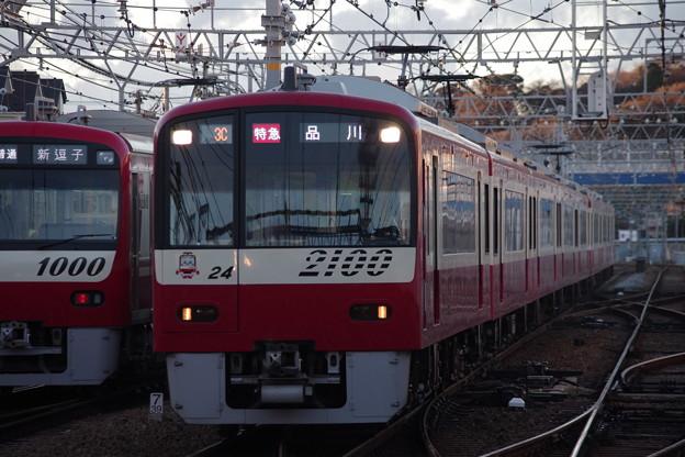 IMGP6071