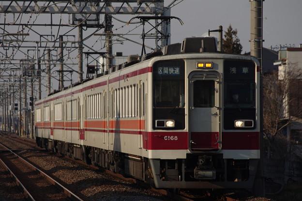 IMGP6690