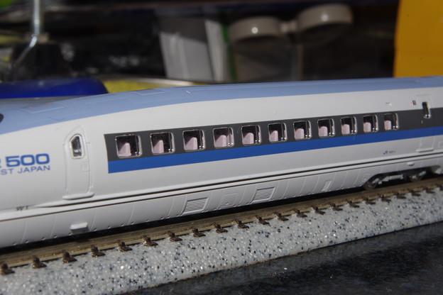 IMGP6895