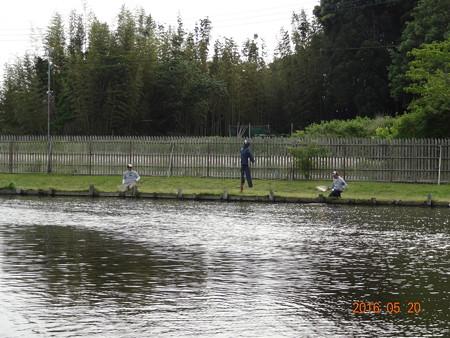 ウォルトンガーデン14時間耐久釣行
