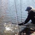 Photos: 開成水辺フォレストスプリングスで釣り納め?