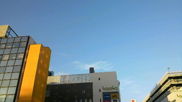 今日は娘と二人で万代シテイに来てみた。 いい天気。 #新潟