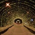 Photos: イルミトンネル