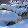 Photos: 岩の上に雪は積もりて