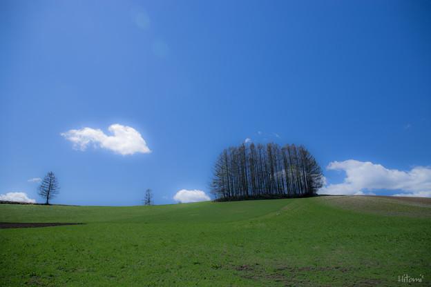 写真: ハート雲を追いかけて