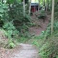 写真: 韮山城遺構