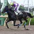 ムツミサムソン レース_2(16/06/16・2R)