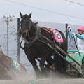ミノルユウセン レース(16/05/01・5R)