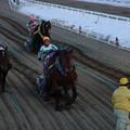サダエリコ レース(05/01/30・第26回 チャンピオンカップ)