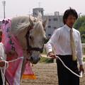オグリキャップ_3(05/04/29・笠松競馬場)