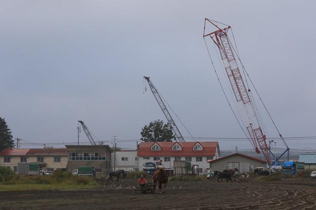 朝調教_9(16/09/25・帯広競馬場)