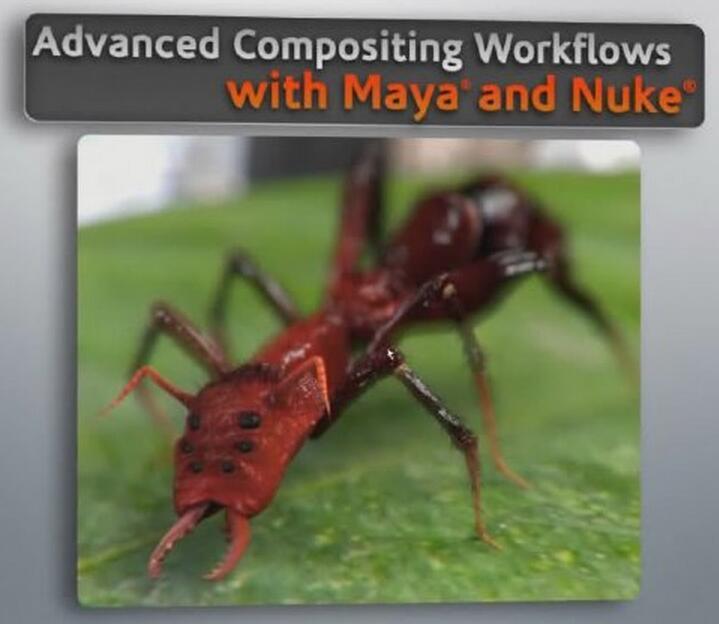 NUK与MAYA高级合成教程(DT Advanced Compositing Workflows with Maya and Nuke)