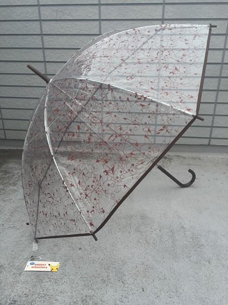 傘 ポケモン ピカチュウぎっしり