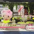 Photos: ア・タ・シ ミヤリー 自称・宇都宮のスーパーアイドル